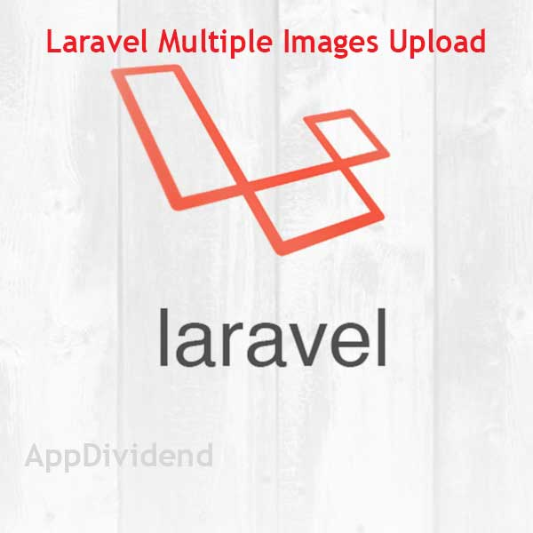Laravel Multiple Images Upload Tutorial Example From Scratch