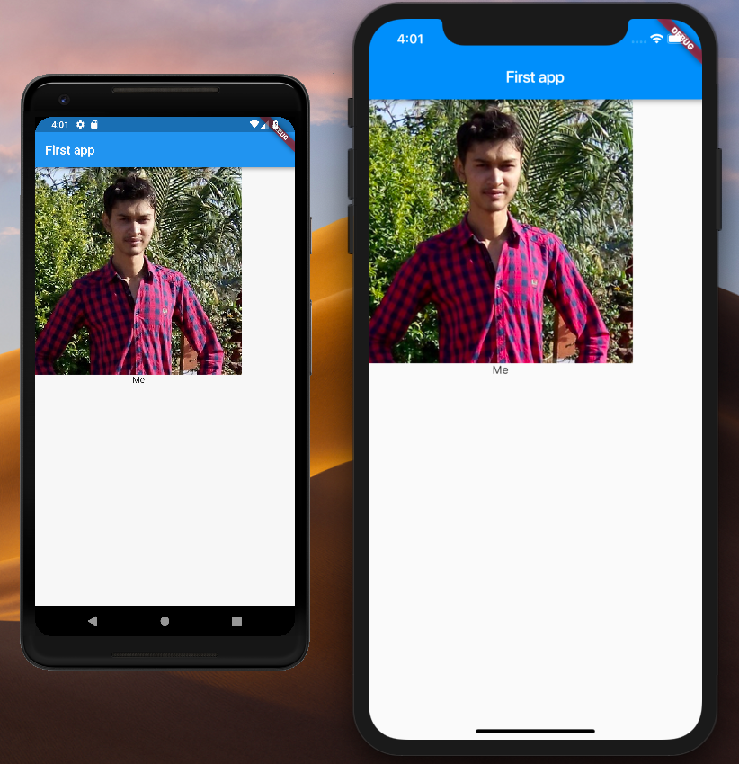 How To Display Image in Flutter