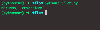 Install the TensorFlow pip package