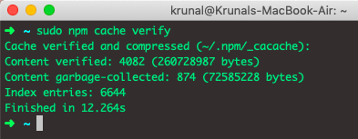 sudo npm cache verify