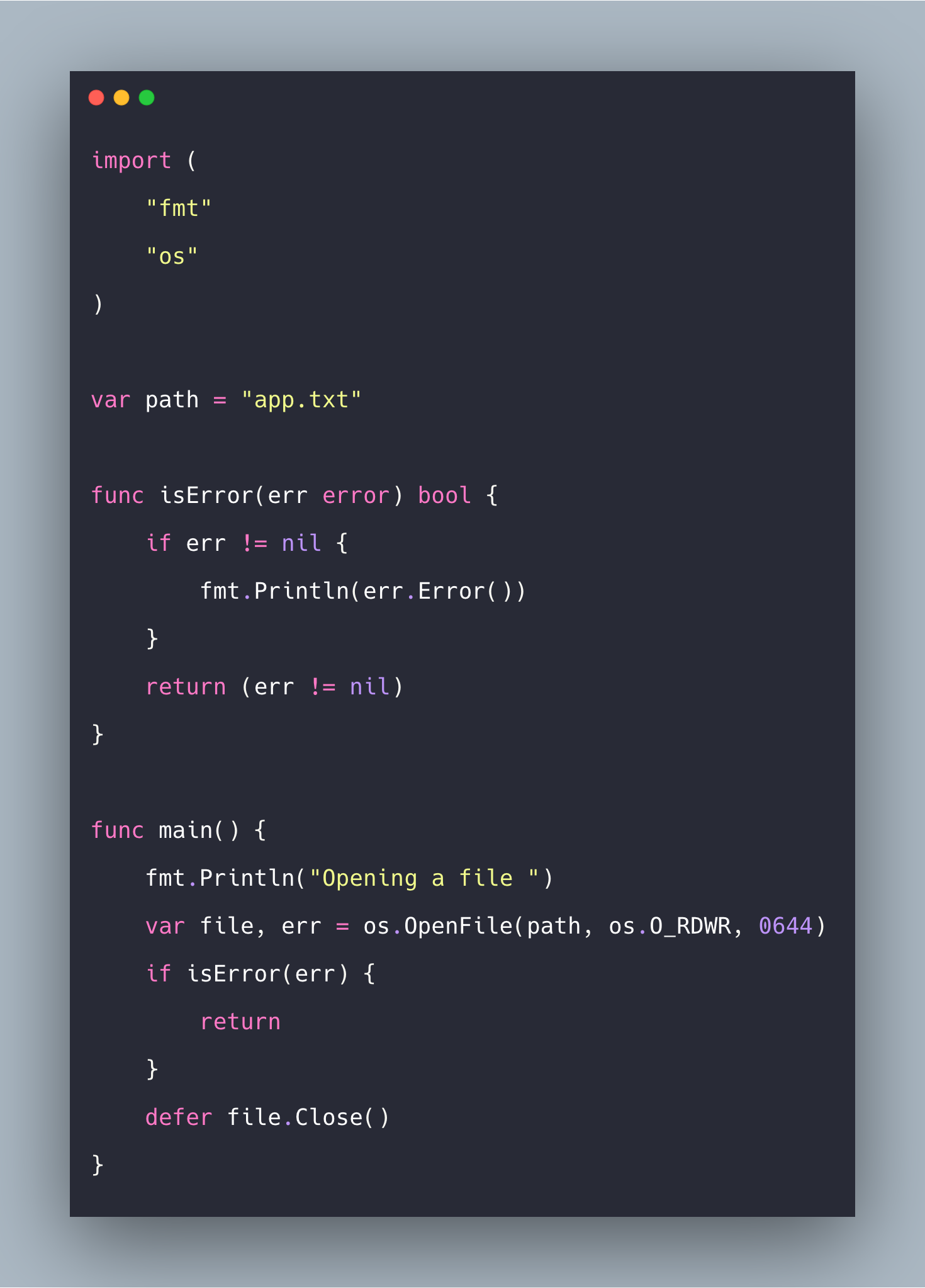 How To Open File In Golang   Go File Open Example